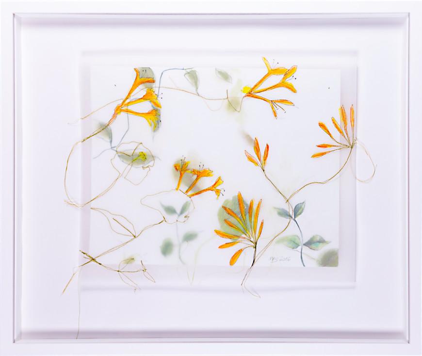 Vorschaubild des Kunstwerks 'Pflanzenstudie 3' aus dem Verleih der Artothek Hallstadt.